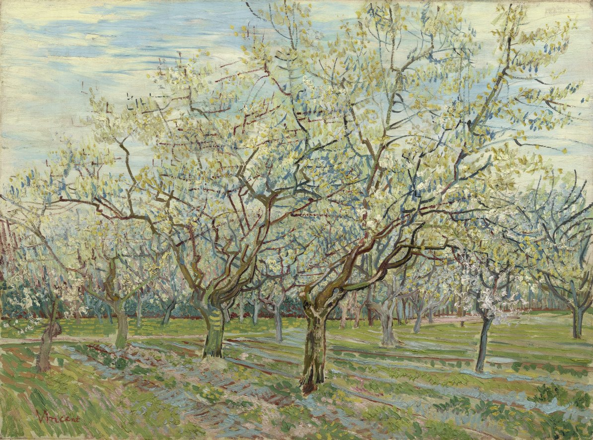 A colourful landscape in the South of France. Flowering trees everywhere you look! 🌸 📝 'The season of orchards in blossom is so short, and you know these subjects are among the ones that cheer everyone up', wrote Vincent. He thought that paintings like this would sell well.