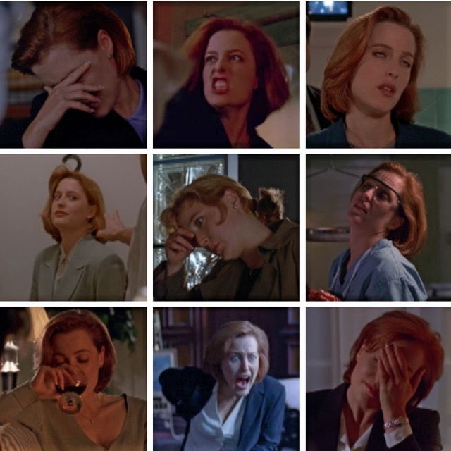 Gillian Anderson does not have a FRAME in this show that is not, as the kids say, a mood