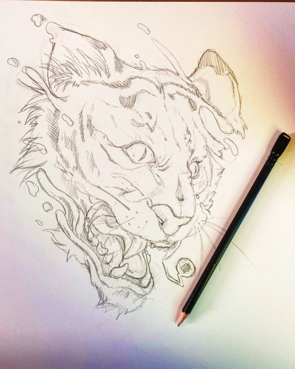 Finished sketching now time to ink #art #tiger #illustration pic.twitter.com/qVvJv0BI7S
