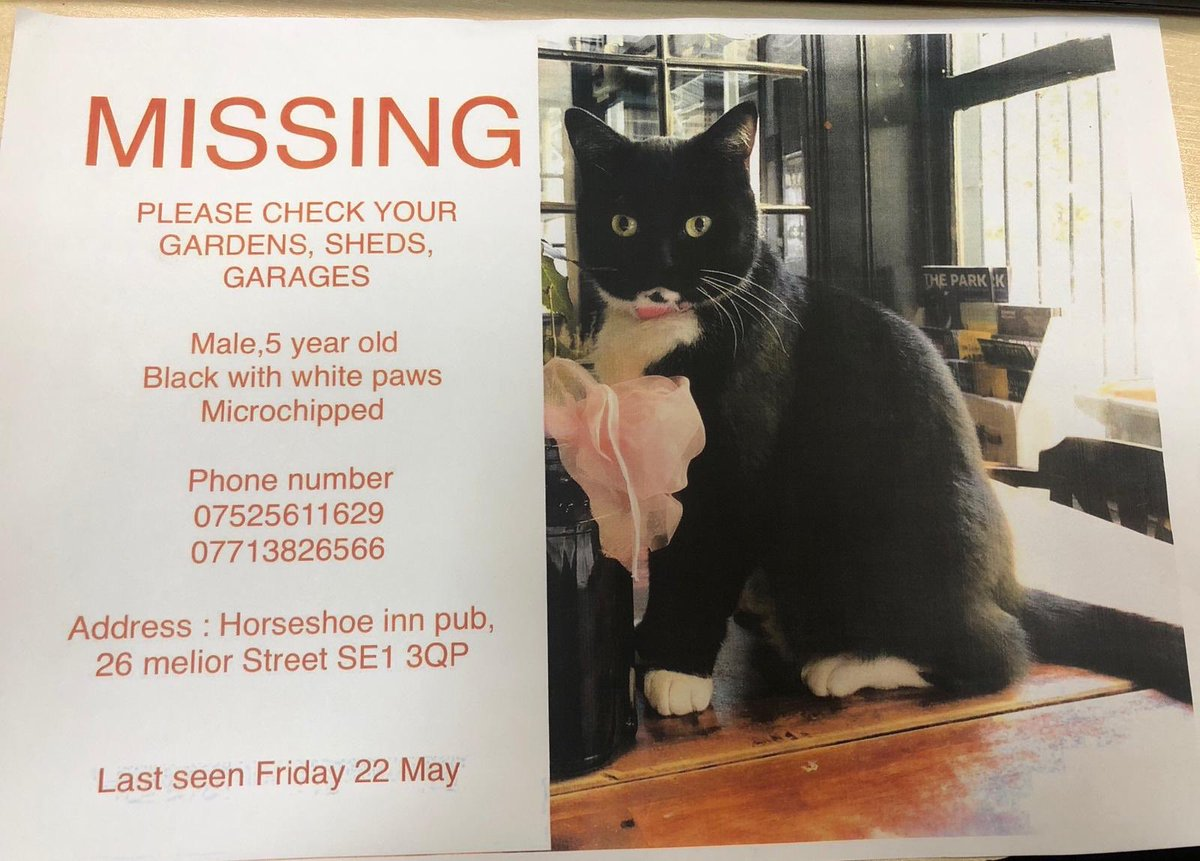 Have you seen this kitty? We were shocked to hear today that one of our patrol companions has gone MIA. If you have any information that could lead to his return, please do get in contact with the number below. Last seen near the Vinegar Yard, St Thomas street. Thank you 🐱