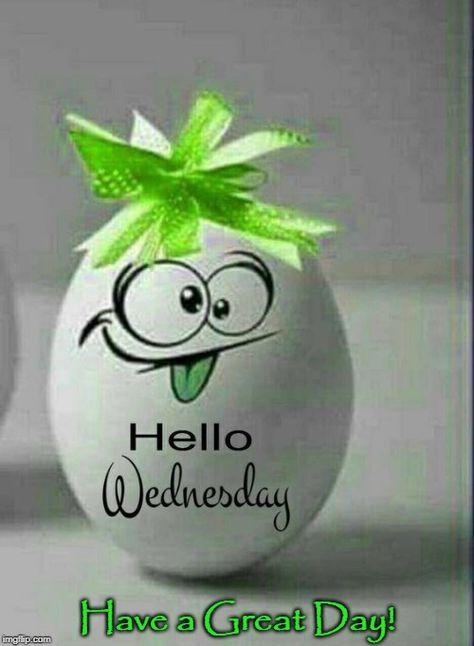 Good morning World  Enjoy the crazy #happiness of your day ... misha  pic.twitter.com/BgztLxfHi9