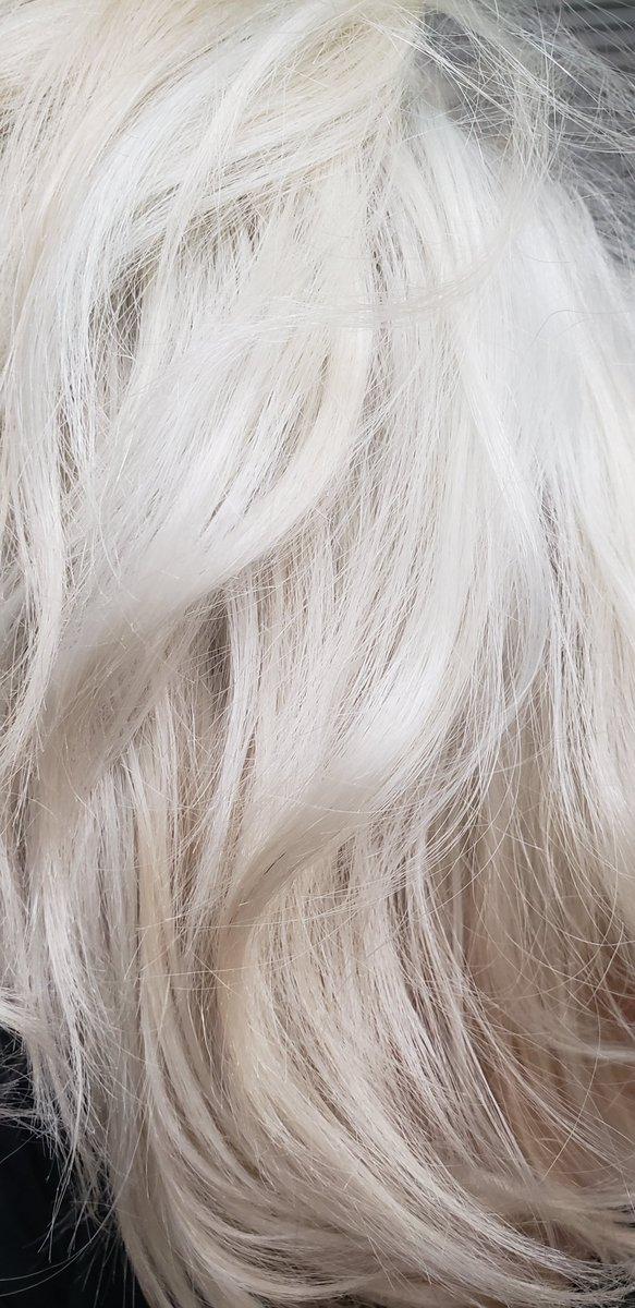 Stuck at home not being able to do anyone's hair so I'll just do my own. Hello Platinum!!   #stylistinquarantine #quarantineproblems #messyhairdontcare #platinumhair #blondehairdontcarepic.twitter.com/O1VZ5X7Uwi