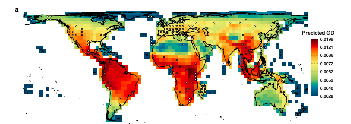 Drivers of global patterns of mammal genetic diversity out now in @NatureComms. Shows high GD in past #ClimateChange safe havens with deep #evolution history. https://www.nature.com/articles/s41467-020-16449-5 … @spytheodor @Carsten_Rahbek  @Noguesbravo  @Stuart_C_Brown  @environmentinstpic.twitter.com/7EDtBwaKdh