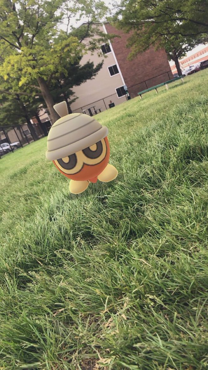 Seedot Community Day was NUTS! 26 shinies total! Hope everyone had a great Community Day! #PokemonGOCommunityDay #SeedotCommunityDay #PokemonGo pic.twitter.com/iDgDvJUkhb