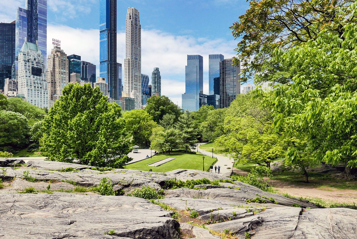 Central Park #newyork #NYC today. pic.twitter.com/b7HxN01O3B