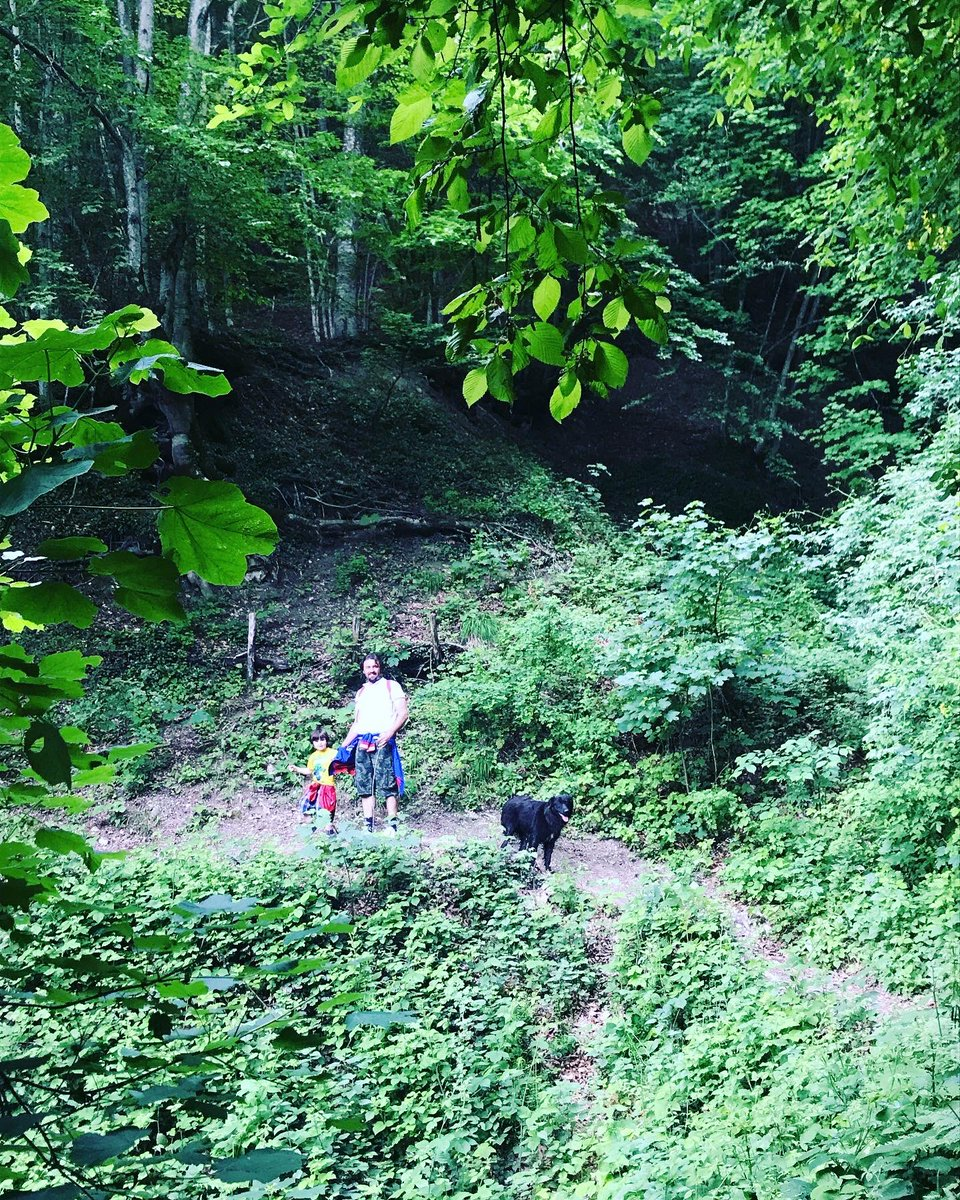 test Twitter Media - Domenica in #montagna sui #Sibillini, niente assembramenti e grande rispetto: siamo stati in uno dei tanti sentieri che partono da #Altino di #Montemonaco 😍 #marcheforkids #ripartidaiSibillini https://t.co/22EAzhGws3