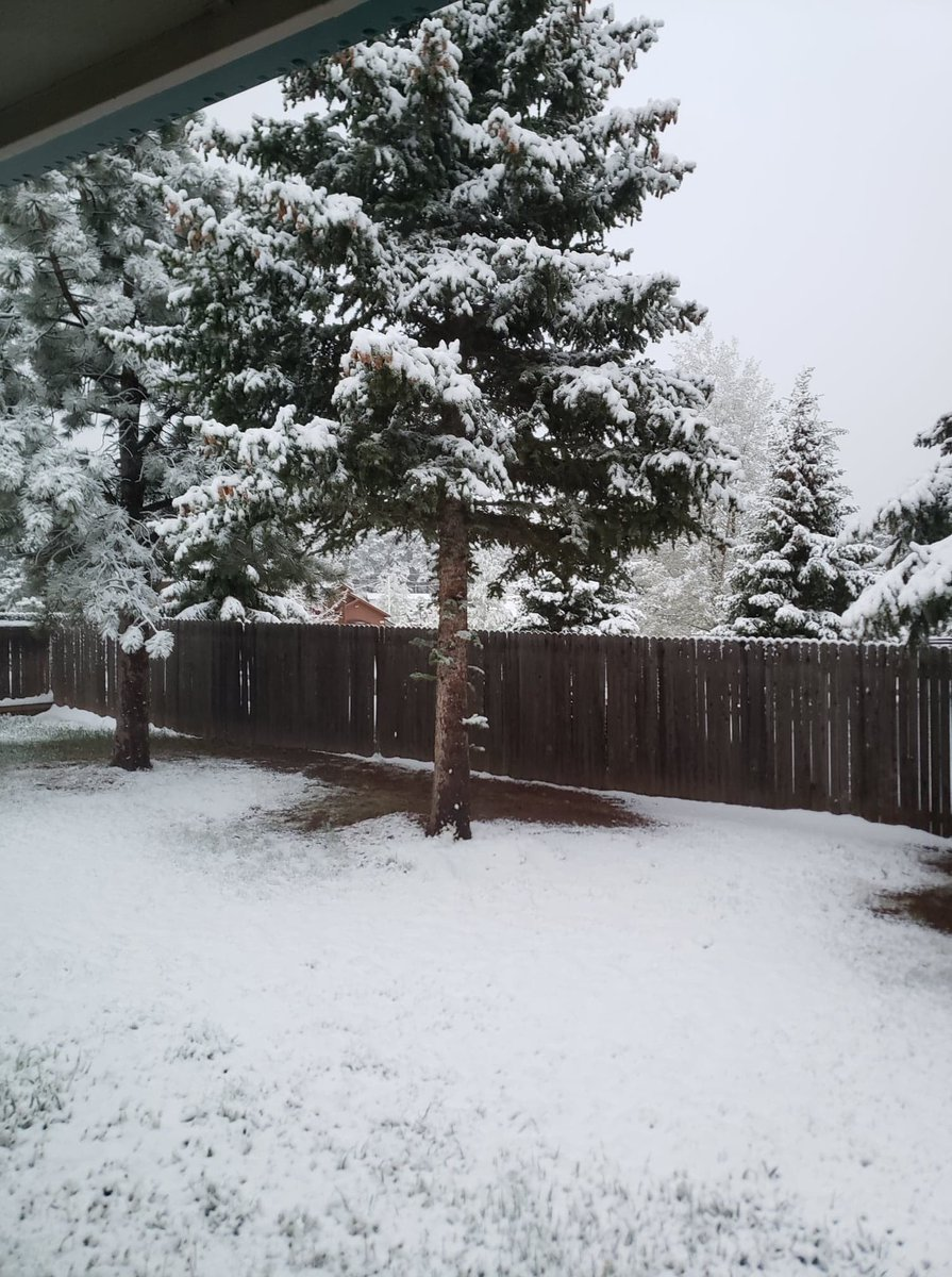 Moms house, Woodland Park! #cowx #snow #Coloradopic.twitter.com/Ys6upgPgw9