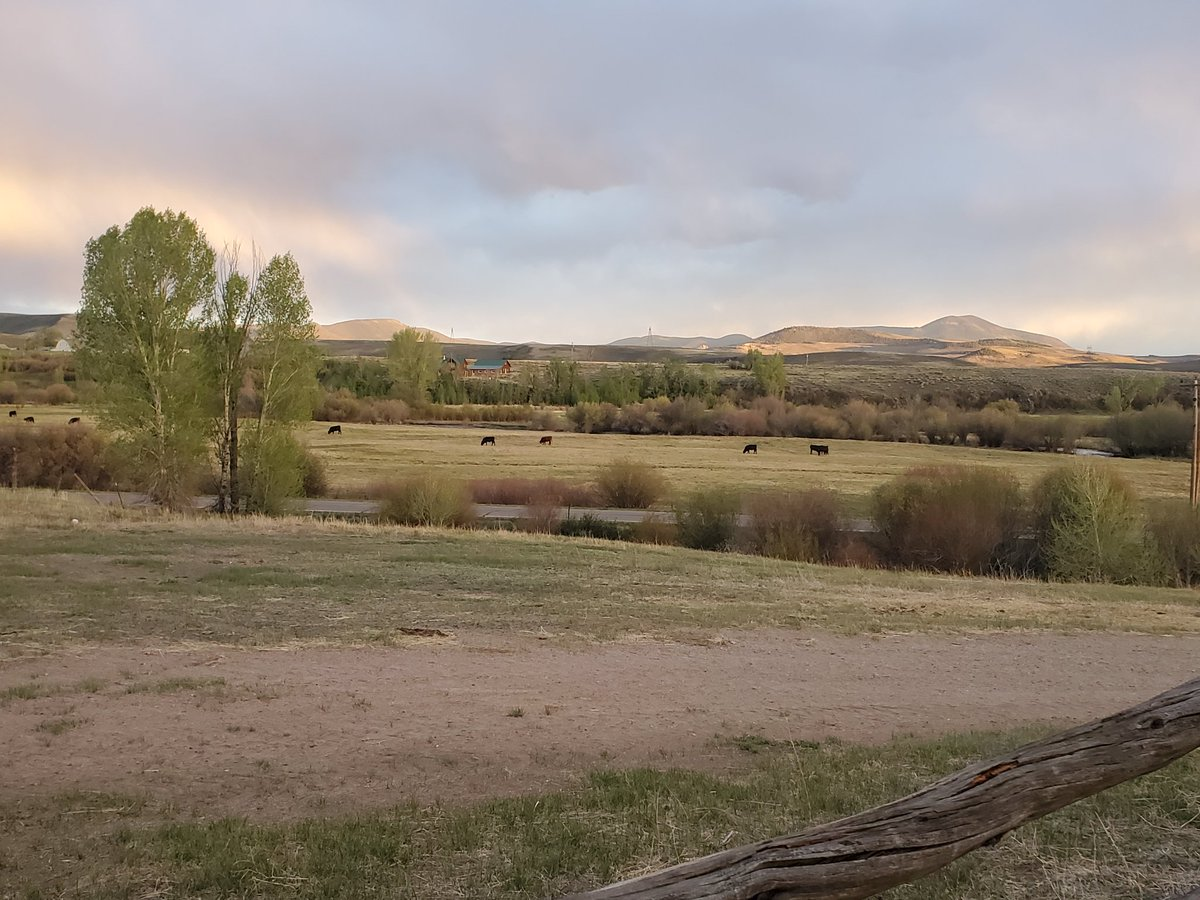 My change of scenery is good for my soul! #RockyMountainHigh #FamilyTime #RanchLifepic.twitter.com/H9DuLEcDWP