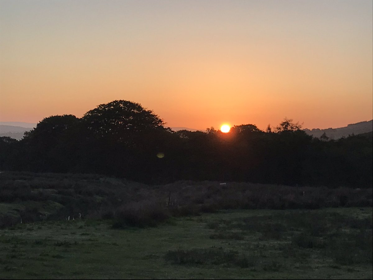 Early start today, good morning all, going to be a gorgeous day... #sunrise pic.twitter.com/y66raXVUn0