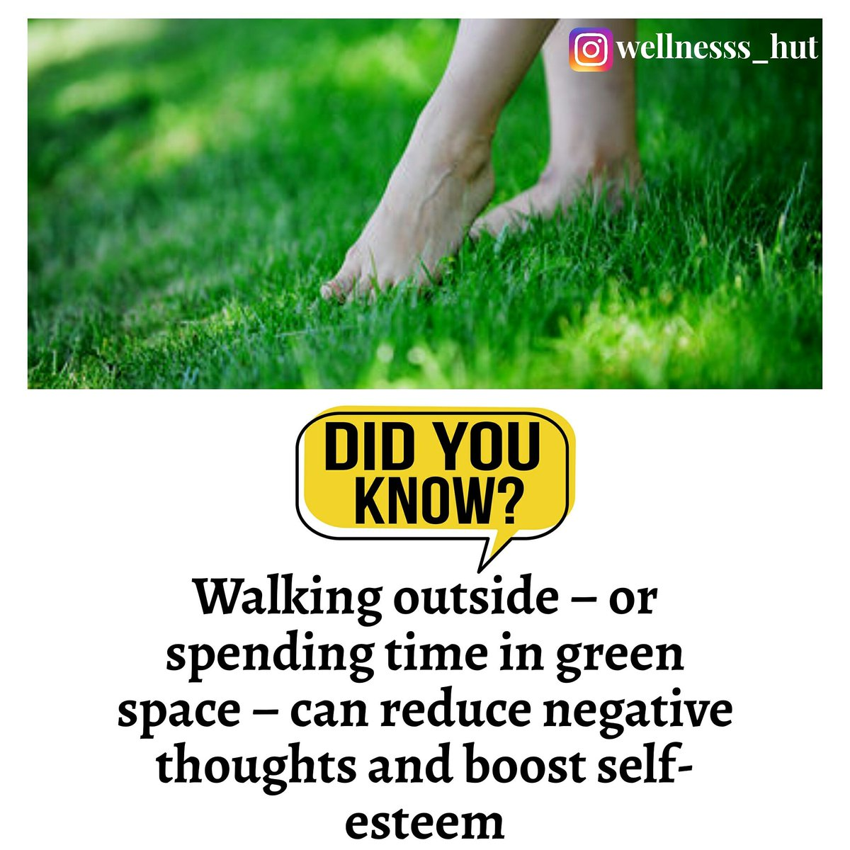 Did you know????  #wellnesss_hut #didyouknow #facts #didyouknowfacts #knowledge #factsdaily #amazingfacts #dailyfacts #factz #interestingfacts #funfacts #doyouknow #truefacts #instafacts #knowledgeispower #generalknowledge  #allfacts #factsoflife #india #realfacts  #worldfacts pic.twitter.com/ssC1pW9U0z