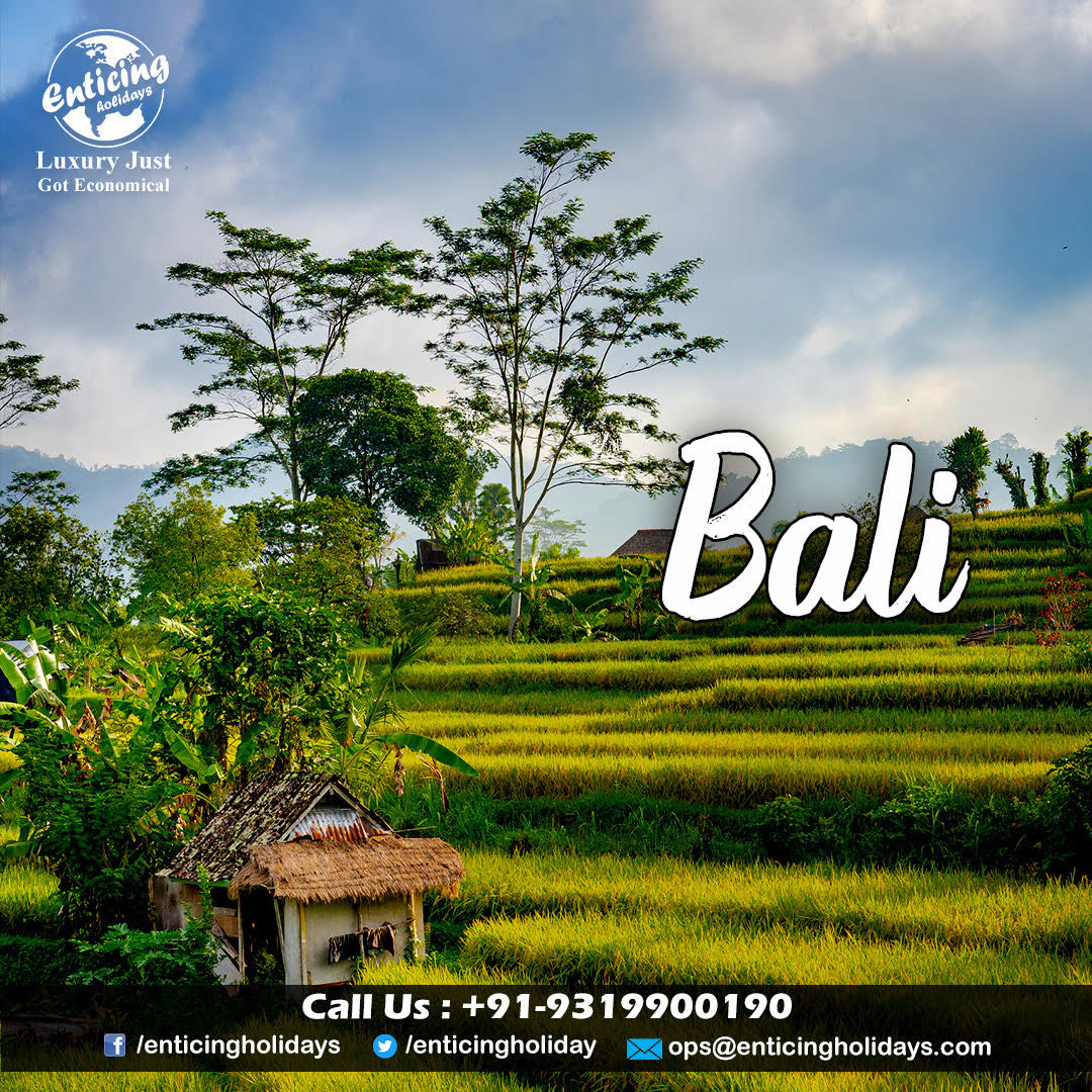 Witness the beauty of nature and explore the marvelous Bali within your budget. Contact Enticing Holidays for Bali Tour Packages. _ ✅For More Detail Visit👉:   ☎Call Us For Booking - +91-9319900190 _ #balitour #balitrip #balipackage #balitravels #bali