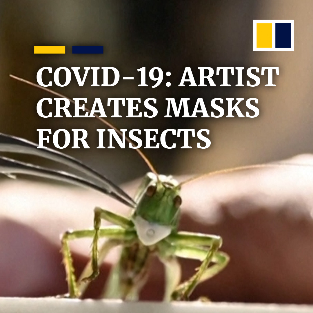 A Russian artist has created tiny masks for insects to symbolically protect them from the coronavirus https://t.co/CLQijPe3Be