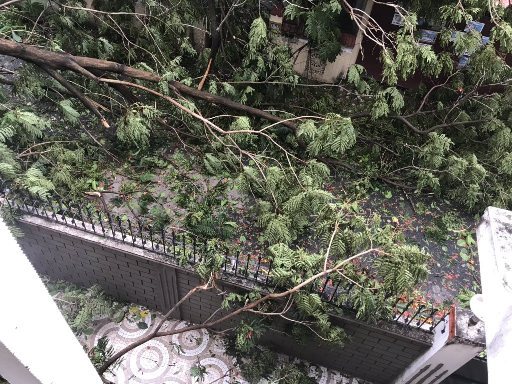 Effect of #AmphanCyclone on my doorstep. Got electricity after 6 days. The cyclone has made me grateful for so many things that we take for granted.  #prayforwestbengal <br>http://pic.twitter.com/oYay144JVr