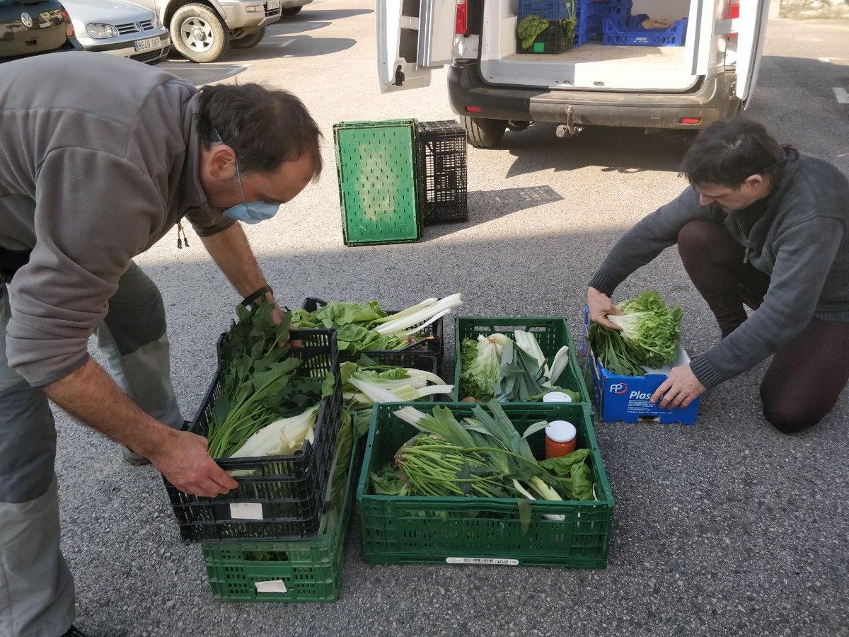 La agricultura de pequeña escala:  Genera empleo  Mantiene el mundo rural vivo  Produce alimentos saludables  Venta de proximidad, sin que los alimentos recorran miles de kilómetros evita productos tóxicos  Lo cuenta @LFerreirim @greenpeace_esp https://bit.ly/3esvJ7Rpic.twitter.com/fSWpu2vlCo