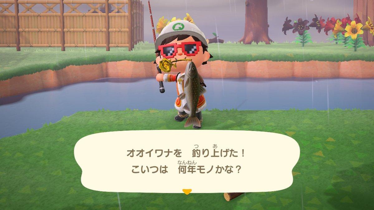 ない オオイワナ 釣れ あつ 森