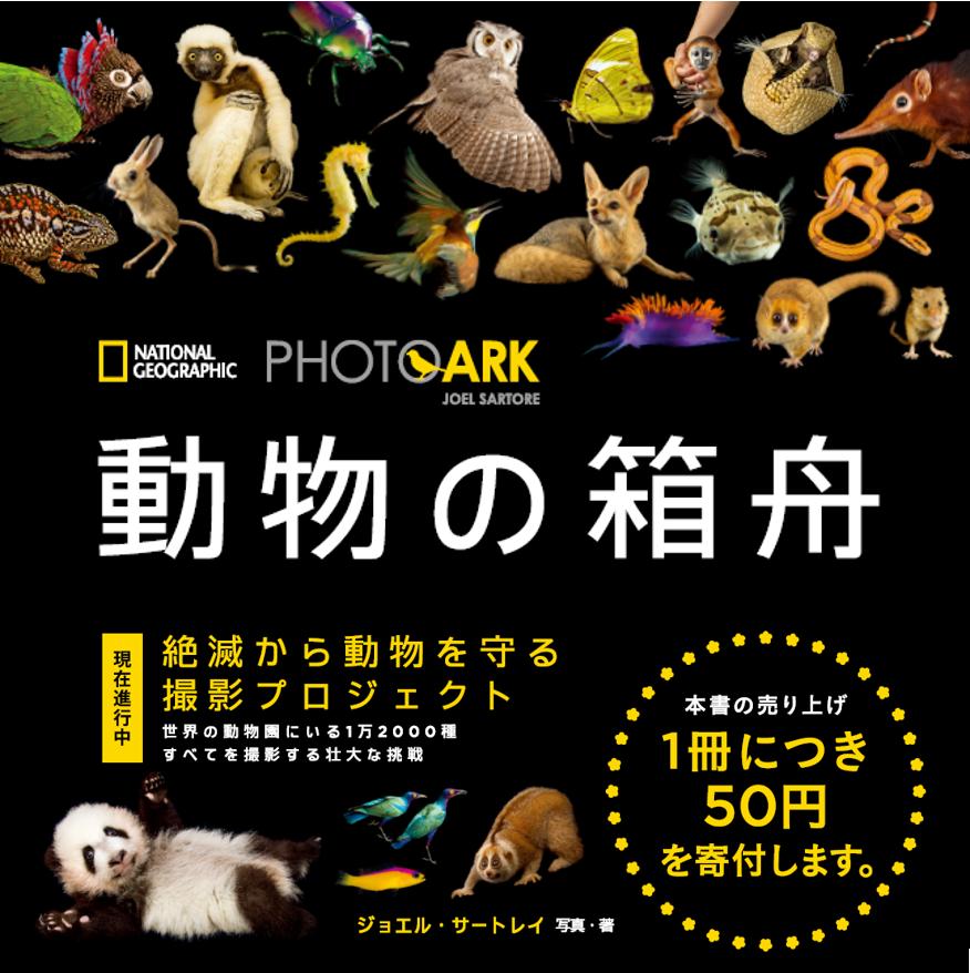 【本】こんなときこそ読みたい! #ナショジオ憩いの写真集 9『PHOTO ARK 動物の箱舟 絶滅から動物を守る撮影プロジェクト』世界の動物園・保護施設で飼育されている生物をすべて一人で撮影するプロジェクト。お馴染みの動物から希少種まで、約400枚もの写真を収録。