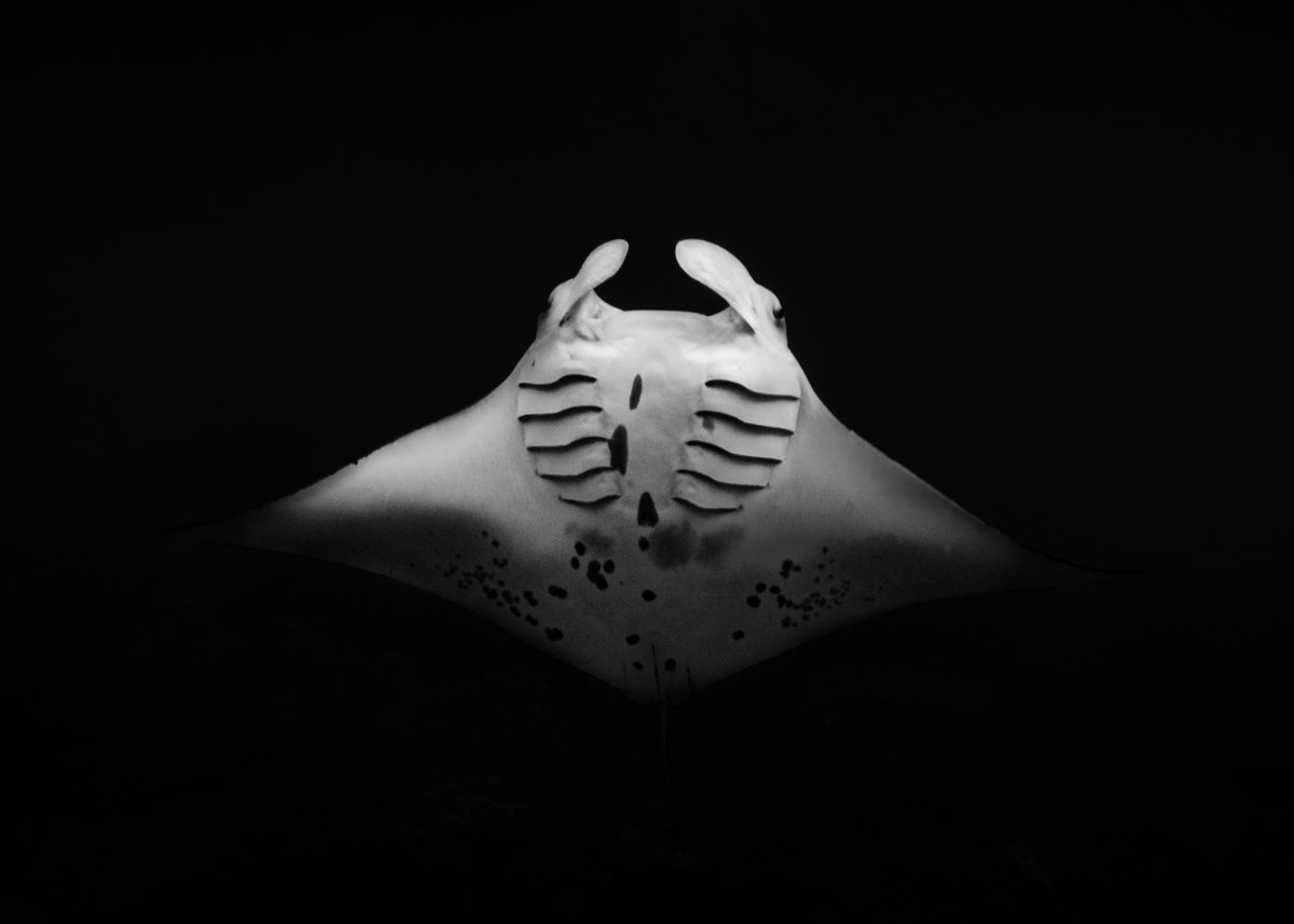 Black & white ocean #guam #gåuhan  Instagram: lostwithlukespic.twitter.com/ZeyerrBxmR