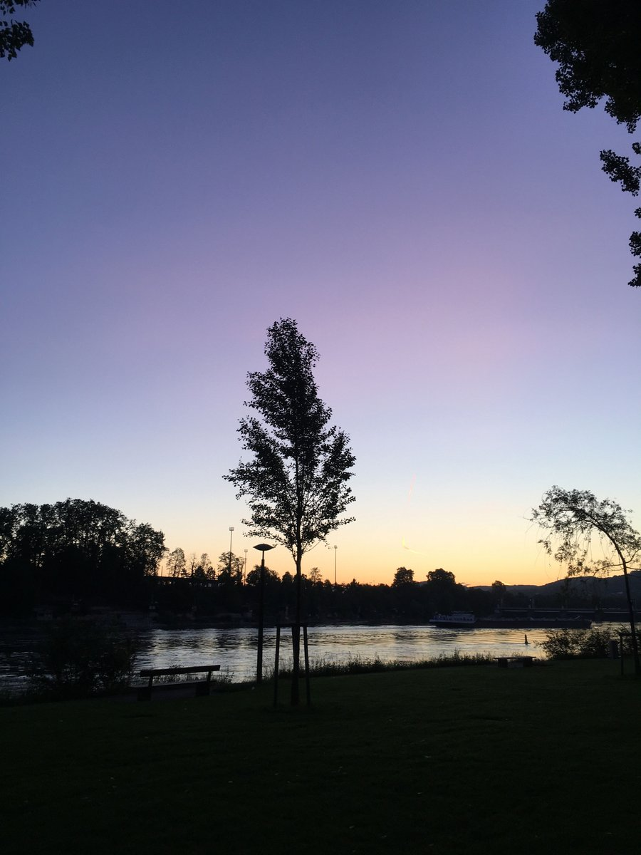 Frühverführungszauber.  #scheggiatoinbrodo #landscapephotography #sunrisepic.twitter.com/2HP5RxTc86