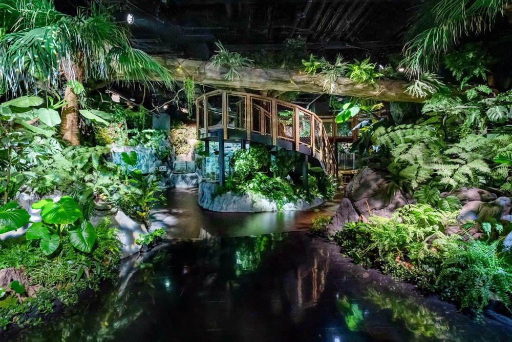 「DMMかりゆし水族館」イーアス沖縄豊崎に誕生、最新の映像表現を駆使したエンタテイメント水族館 -