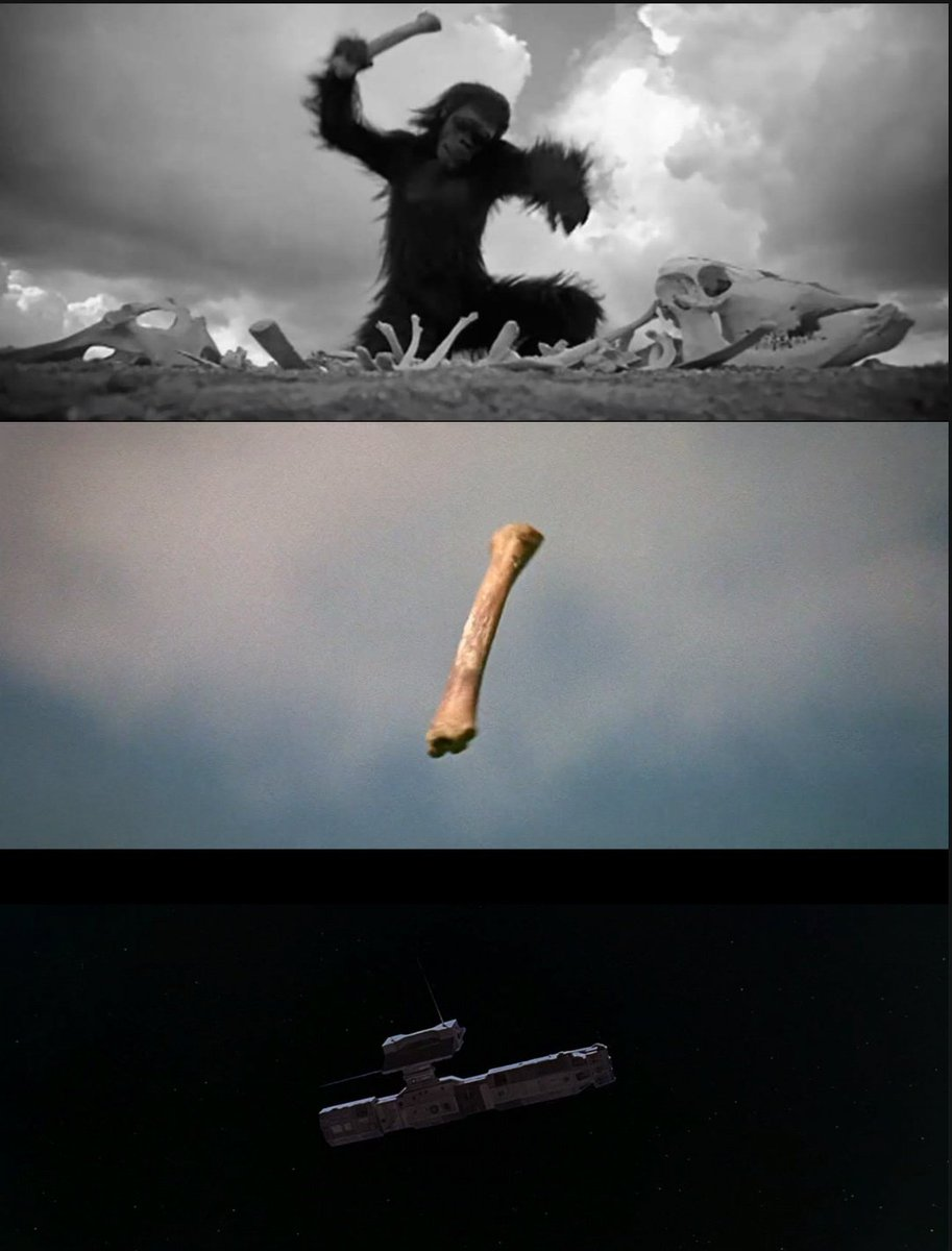 This particular dissolving transition (2nd & 3rd shots) from #StanleyKubrick's 2001 : A Space Odyssey is effing BRILLIANT. pic.twitter.com/kgLsT15tYf