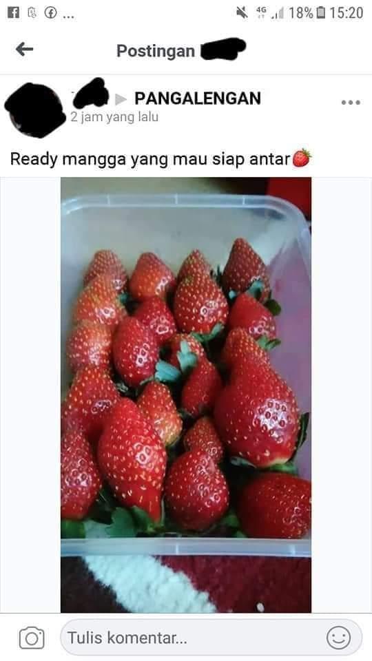 bang_amed photo