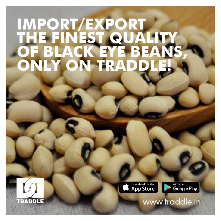 Black-eyed #beans are pale-colored with a prominent dark spot mostly grown and eaten in the southern #USA.   #Madagascar, #Canada, and the #USA are its biggest exporters while #Kenya, #Japan & #India are major importers and the market is expected to show decent growth.  #agripic.twitter.com/rhX14NoNjY