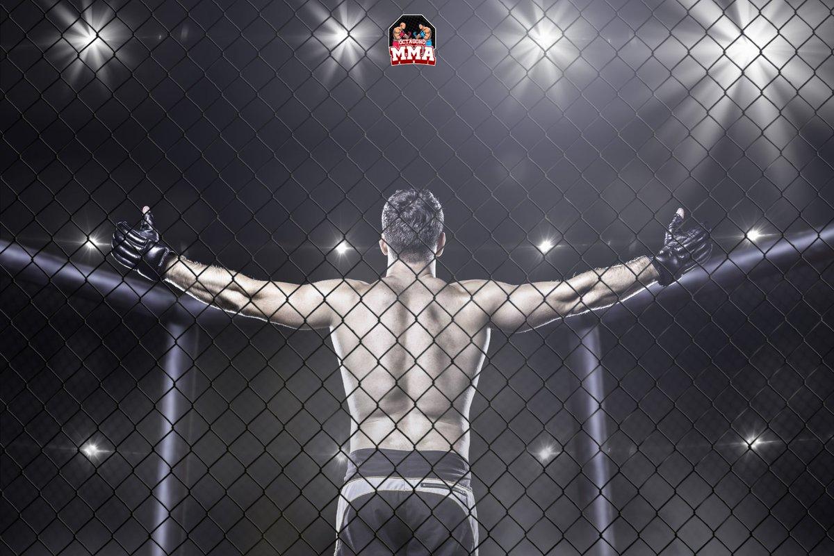 🤔 ¿Cuál es tu peleador favorito de la #UFC? Te leemos en los comentarios ⬇️⬇️⬇️ En @OctagonoMMA_com verás noticias, resúmenes y próximos eventos de tus peleadores favoritos. 🔥 Link en bio para lo ultimo de #ufcnoticias 🔥 #mmanoticias #ufcespanol #mma #octagonomma https://t.co/AQTqEq0NWa