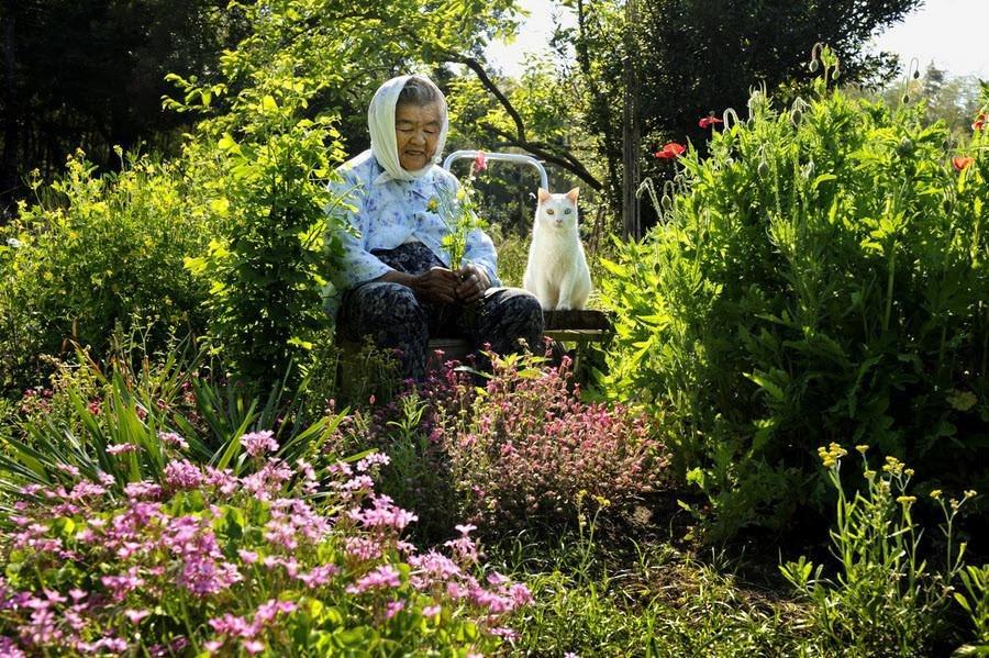 Japanese photographer Miyoko Ihara documented the loving bond between her grandmother Misao and her odd-eyed cat Fukumaru over a number of years #womensart https://t.co/swm6VaTcEq