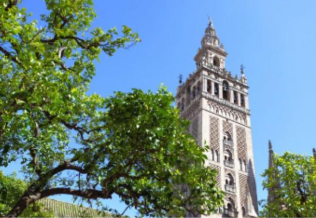 Sevilla acogerá del 12 al 16 de septiembre de 2021 los #congresos mundial y nacional de Farmacia. La FIP y EL Consejo General de Farmacéuticos acuerdan #aplazar el Congreso Mundial de Farmacia y Ciencias Farmacéuticas y el Congreso Nacional Farmacéutico. https://cutt.ly/yyAt7Qz pic.twitter.com/wcyfvoiW7s