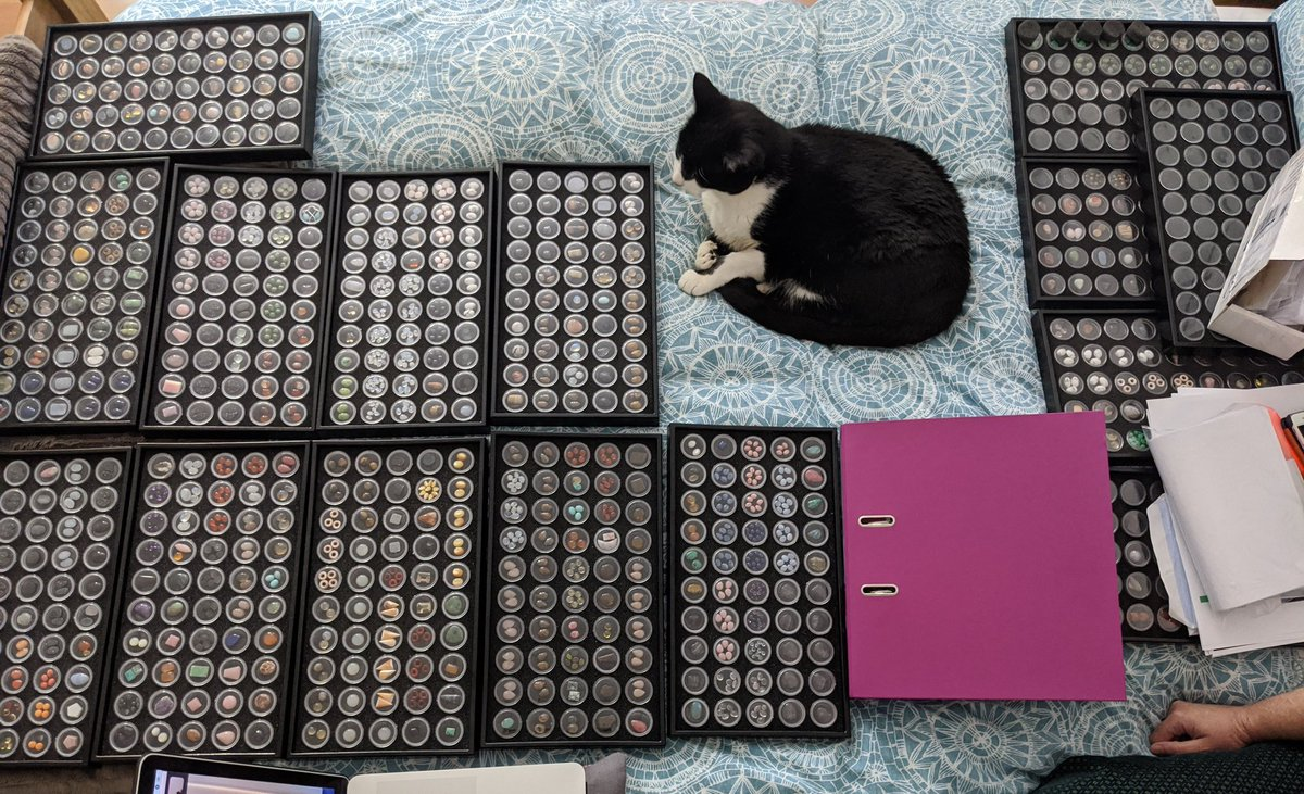 Gemstone organisation with assistant Neo!   Any cat owner will know that you have to work AROUND your pets at times!   #CrackleJewellery #CatsOfTwitter #Gemstones pic.twitter.com/VnCbm616Wd