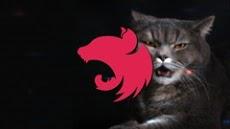 Online Courses - NestJs in Practice (with MongoDB) ->  http:// bit.ly/2Ku6xku      #100DaysOfCode #html5 #NodeJs #Angular #WordPress #react #css3 #javascript #vuejs #Python #PHP #MongoDB #redux #Django #bootstrap4 #udemy #Coupons #Free #Discounts<br>http://pic.twitter.com/4ztsebJBiV