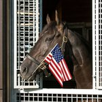 Thankful for all the heroes who have served our country this Memorial Day 🇺🇸🐴  #MemorialDay