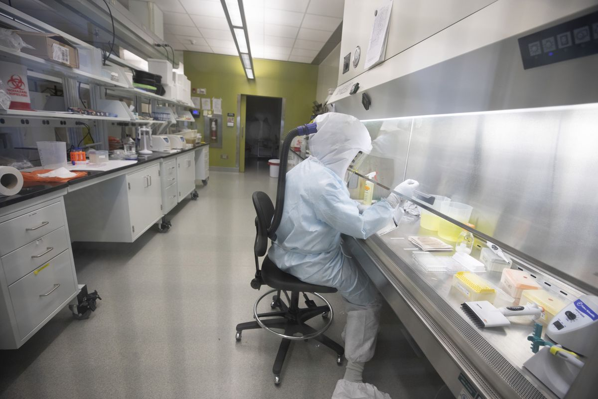 Canadian vaccine candidate delivers promising results in animal tests