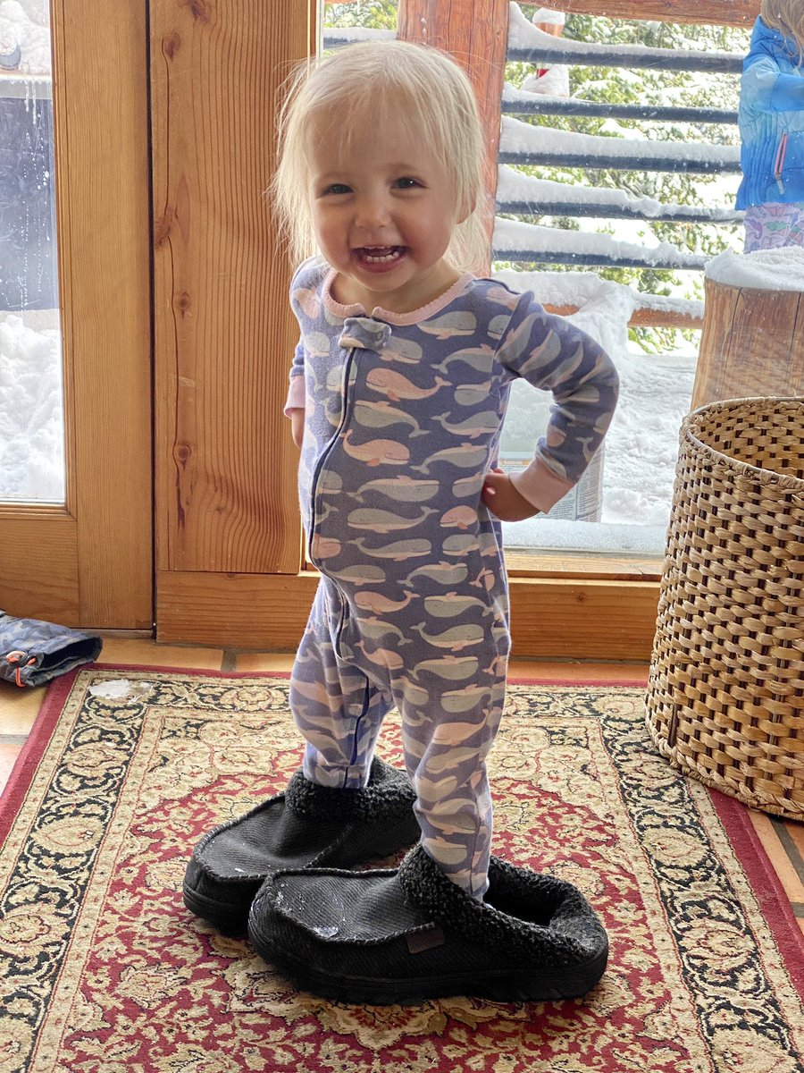 Someone is very happy to have found my snowy slippers #Colorado pic.twitter.com/PUU01CLW4G