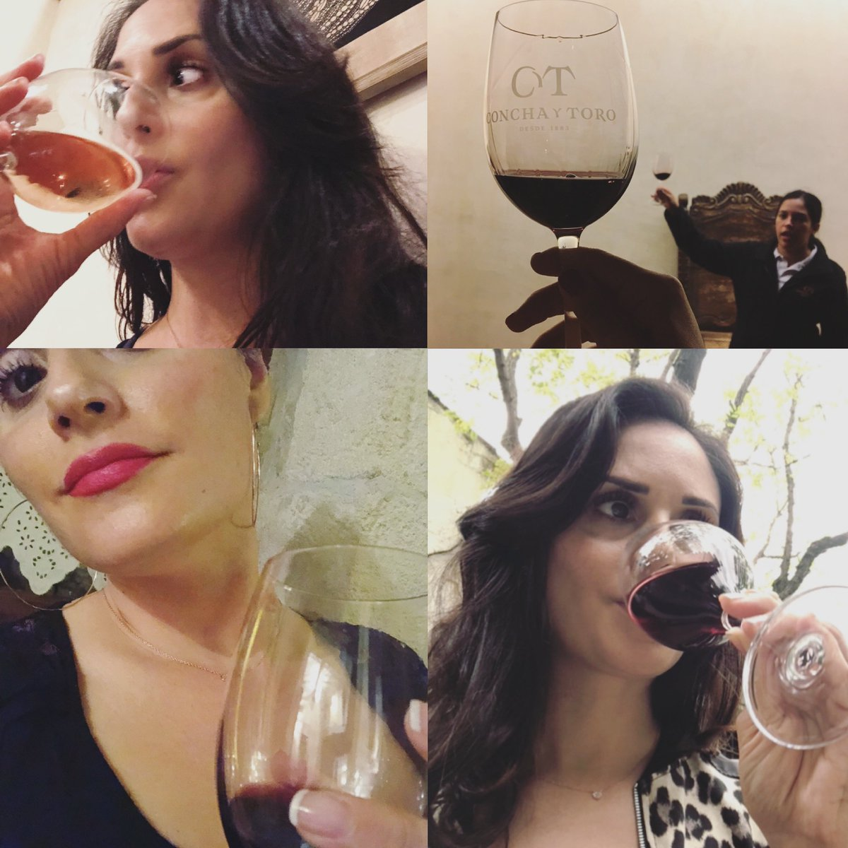 There are an astonishing number of photos of me enjoying a glass(es?) of #Vino  #NoRegrets #Salud ♡ Happy #NationalWineDay  ♡ #Vancouver #Wine #France #Italy #Chile #Canada #Germany #WineLoverpic.twitter.com/z61NQXiQkL