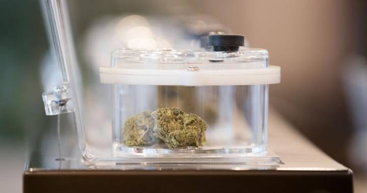 City of Calgary issues court summons to store, alleges it illegally sold cannabis dlvr.it/RXLLks