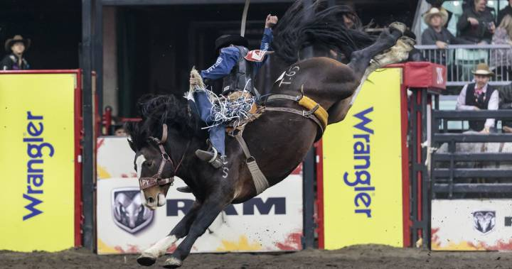 Entire rodeo season, including Canadian Finals Rodeo, in question due to COVID-19 dlvr.it/RXLQQ4