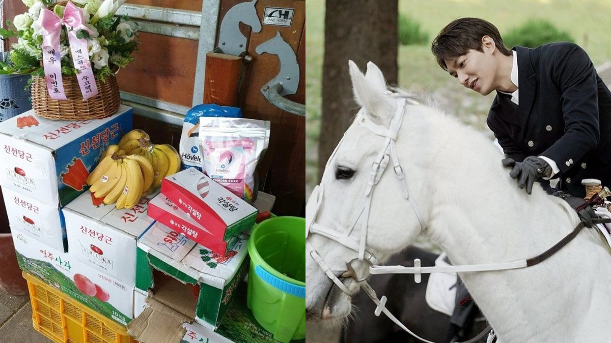 #LeeMinho showered '#Maximus' the horse with delicious gifts. #이민호 #맥시무스  https://news.sbs.co.kr/news/endPage.do?news_id=N1005804820…pic.twitter.com/cCbMd3fI4b