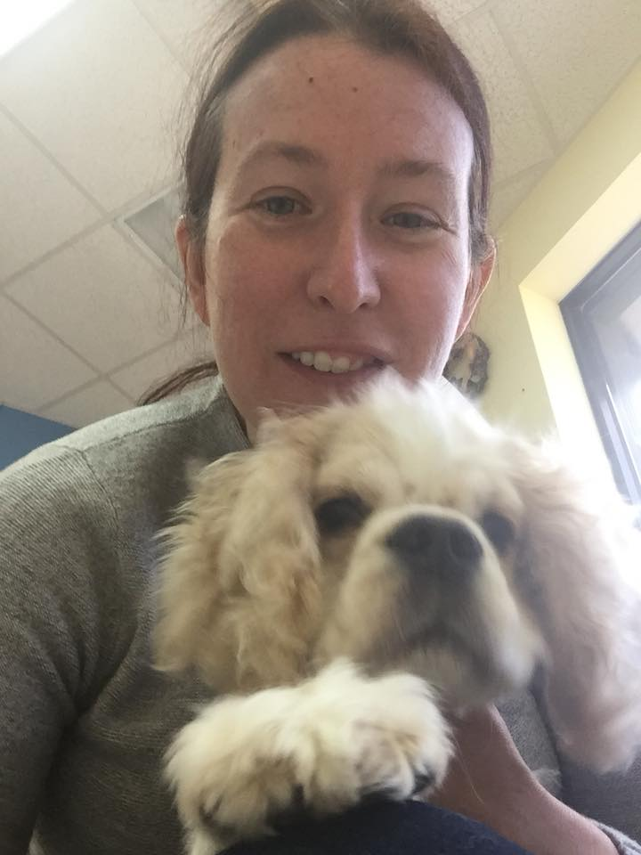 """Amy Cooper, the woman in the viral Central Park video, has surrendered her cocker spaniel to the dog rescue where she adopted him in 2018, the rescue group says. """"The dog is now in our rescue's care and he is safe and in good health,"""" a Facebook post says:"""