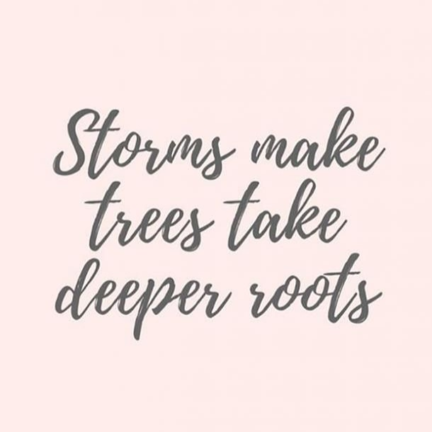 Storms make trees take deeper roots.  #mentalhealthawareness #mentalhealth #positivity #positivevibes #motivation #happy #trust #trustyourself #future #yourownvoice #worthpic.twitter.com/GveHyQWu2Z