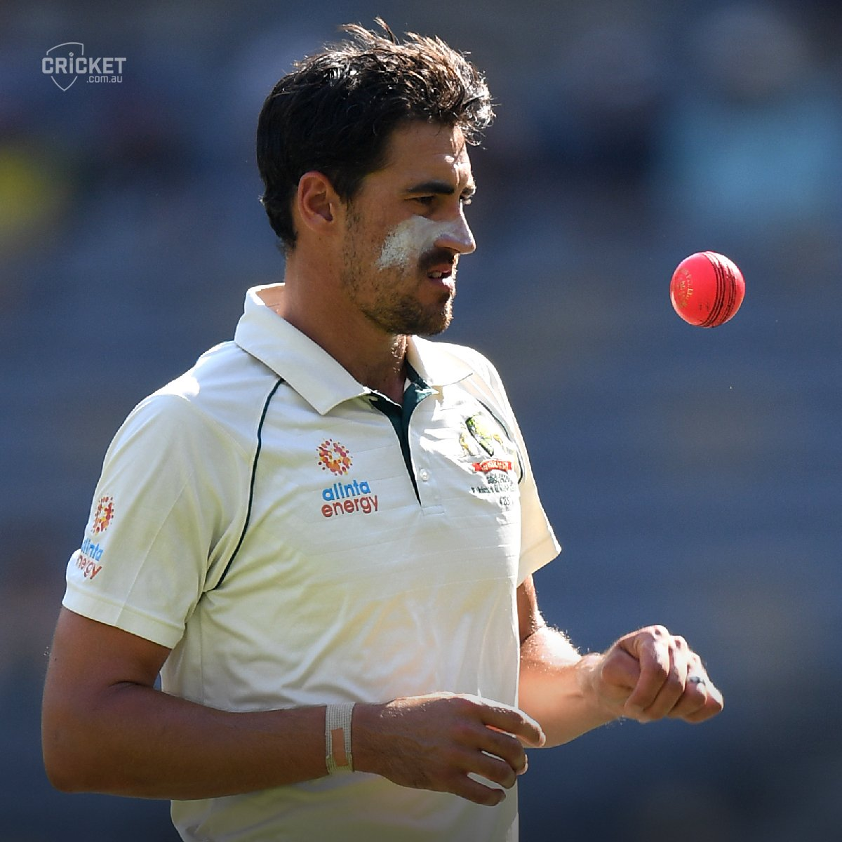 Pink-ball maestro Mitch Starc would love to face India in a day-night Test this summer #AUSvIND