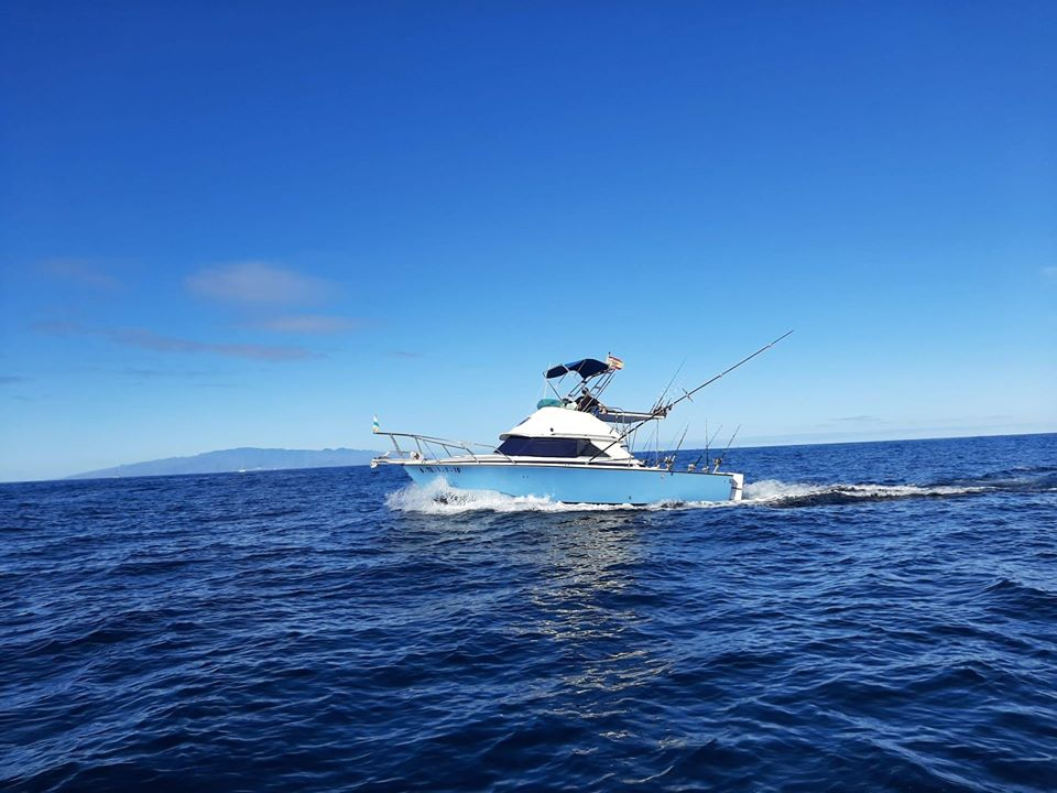 Do you like deep sea fishing? Have you ever thought about @NoLimitsSportFishing? They offer a wide range of experiences and excursions at the sea.#Wellbeback #SeeYouSoon #StayAtHome #nature #gastronomy #luxe #whalewatching #leisure #fishing https://tenerifesportfishing.com/pic.twitter.com/rqEC4KHjRN