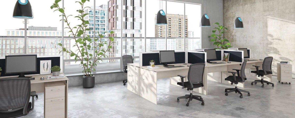 #3drender of an office workspace.  @3drenderbot  #3drender #3ddesign #3dvisualization #interiordesign #officespace #interiorinspo #spaceplanning #modern #office #furniture #officefurniture #workspace #corporate #desk #table #chairs #window #naturallight #greenery #cementfloor