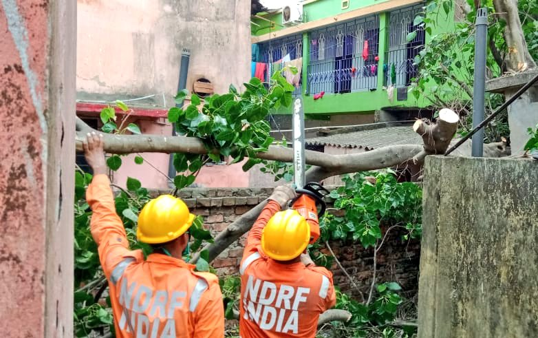 #CycloneAmphan Updates 26/5/20- 𝐃𝐀𝐘6-#PostAmphanRestoration NDRF @ Restoration Work at Kamar Danga Road, Kolkata, West Bengal #NDRF4U #Committed2Serve @satyaprad1 @ndmaindia @PMOIndia @HMOIndia @PIBHomeAffairs @BhallaAjay26 @DDNewslive @ANI @airnewsalerts @PTI_News