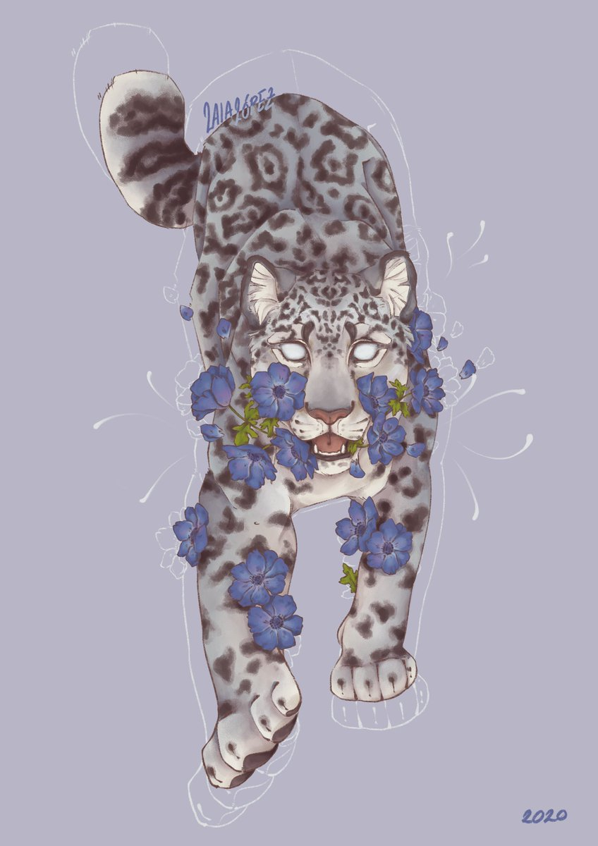 Forsaken  Snow leopard with anemone flowers. I quite struggled with this one! #illustration pic.twitter.com/wlsnsgkAaJ