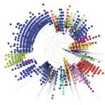 Image for the Tweet beginning: NEWS: Analysis of #COVID19 genomes