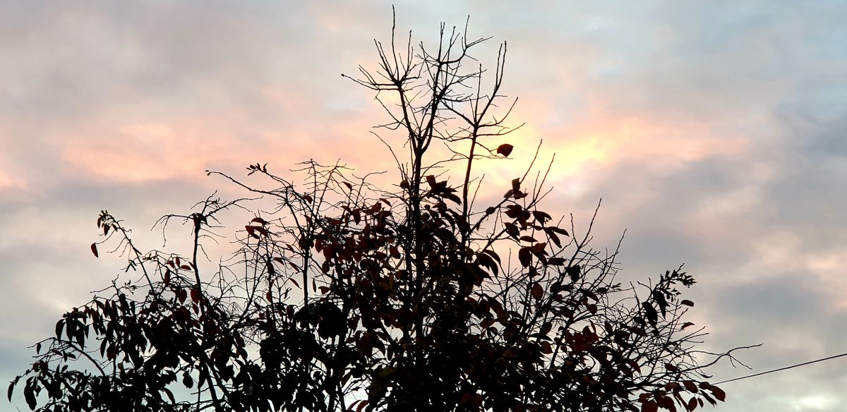 Weekend skies around sunset time.   #AutumnFeels #Sunday