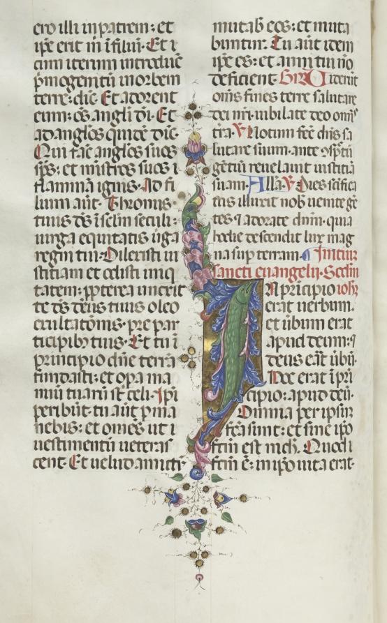 Missale: Fol. 22v: Foliage with Fish, Bartolommeo Caporali, 1469  #clevelandart #MedievalArt