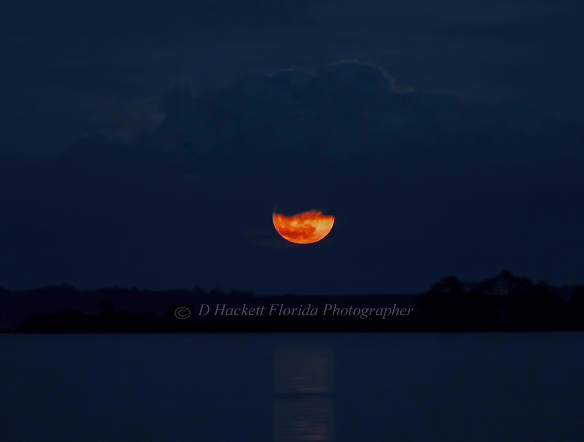 December 3, 2017, was the year's one and only #supermoon.  Known as the Cold Moon or the Long Night Moon this magical moon's #reflection on water was amazing.   https://donna-hackett.pixels.com/featured/supermoon-december-2017-d-hackett.html…pic.twitter.com/kNIktQRMP1