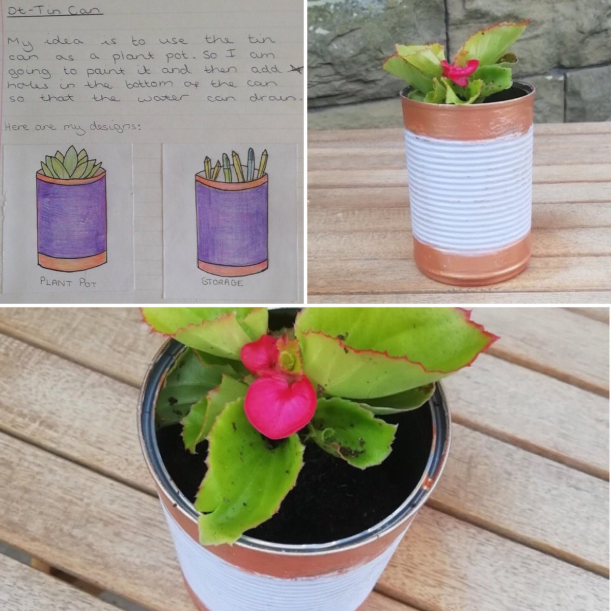 / / TIN CAN PRODUCTS / /   Ailsa F in Year 7 designed and made this lovely flower pot! Well done! #productdesign #design #tin #beans #homelearning #TuesdayMotivationpic.twitter.com/DBgPj8AGqT